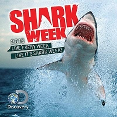Click to get Shark WeeK Wall Calendar 2016
