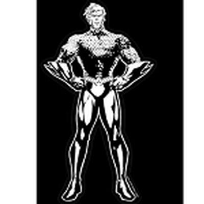 Click to get Aquaman Car Decal