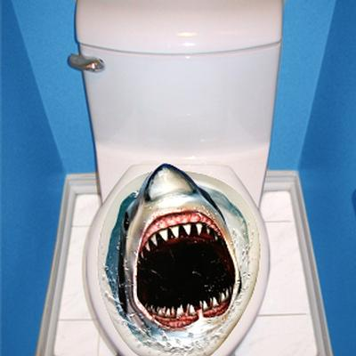 Click to get Prank Shark Toilet Topper