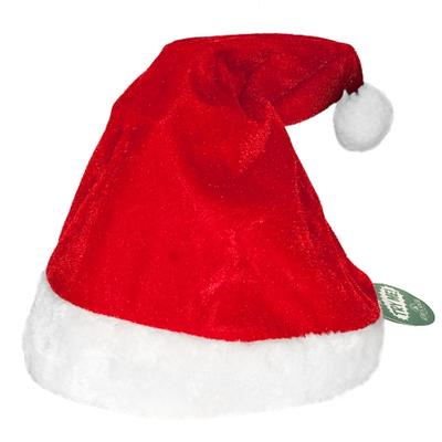 Click to get Singing and Dancing Santa Hat